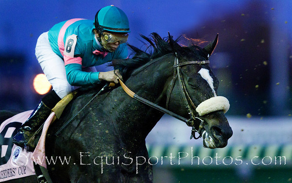 Zenyatta, Mike Smith up, in the Breeders' Cup Classic (G1) at Churchill Downs 11.06.2010ae
