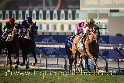 Wise Dan (Wiseman's Ferry) wins the Breeders' Cup Mile at Santa Anita on 11.3.2012 breaking the track record.  Johnny Velazquez up, Charles Lopresti trainer, Morton Fink owner.