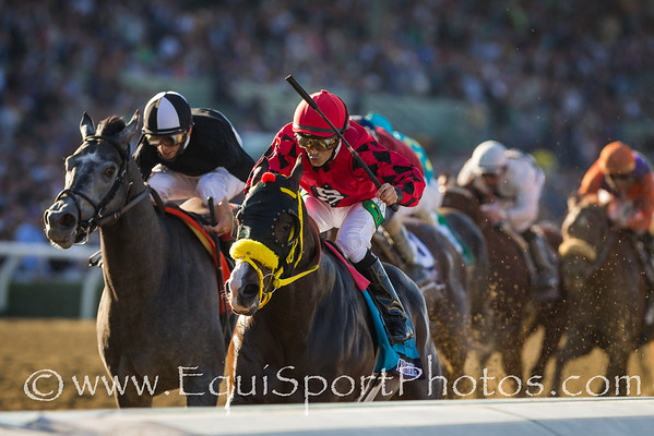 Trinniberg (Teuflesberg) wins the Xpressbet Breeders'Cup Sprint at Santa Anita on 11.3.2012. Willie Martinez up, S Parbhoo trainer, Sherry Parbhoo owner.