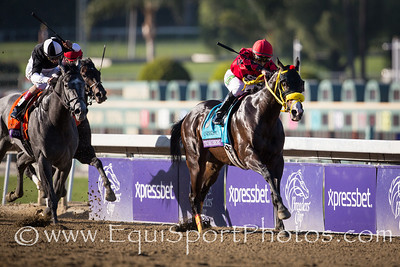 Trinniberg (Teuflesberg) wins the Xpressbet Breeders' Cup Sprint at Santa Anita.  Willie Martinez up, S Parbhoo trainer, Sherry Parbhoo owner.
