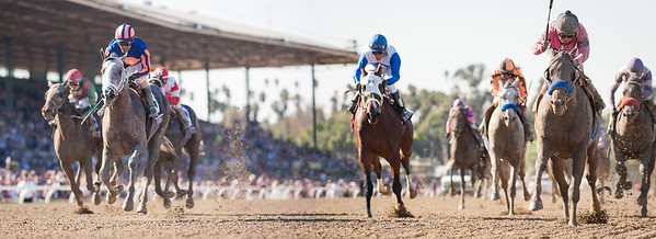 New Year's Day (Street Cry) wins the Breeders' Cup Juvenile at Santa Anita on 11.2.2013. Martin Garcia up, Bob Baffert trainer, Gary and Mary West owners.