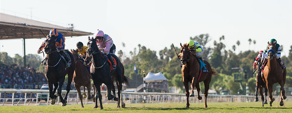 Magician (Galileo) wins the Breeders Cup Turf at Santa Anita Park on 11.2.2013. Ryan Moore up, Aidan O'Brien trainer, Michael Tabor, Derrick Smith & Mrs. John Magnier owners.