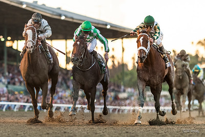 Mucho Macho Man (Macho Uno) wins The Breeders' Cup Classic at Santa Anita on 11.2.2013. Gary Stevens up, Kathy Ritvo trainer, Reeves Thoroughbred Racing owners.