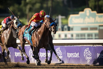 Secret Circle (Eddington) wins the Xpressbet Breeders' Cup Sprint at Santa Anita Park on 11.2.2013. Martin Garcia up, Bob Baffert trainer, Mike Pegram, karl Watson & Paul Weitman owners.