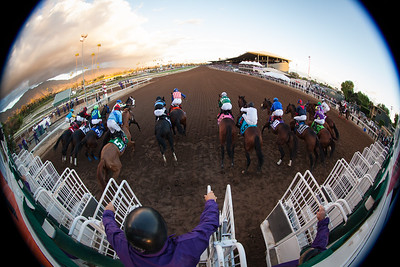 Bayern (Offlee Wild) wins The Breeders' Cup Classic at Santa Anita on 11.1.2014 after a lengthy inquiry regarding his start at the gate. Martin Garcia up, Bob Baffert trainer, Kaleem Shah owner.