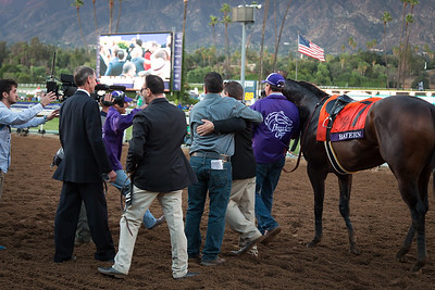 Bayern (Offlee Wild) wins The Breeders' Cup Classic at Santa Anita on 11.1.2014. Martin Garcia up, Bob Baffert trainer, Kaleem Shah owner.