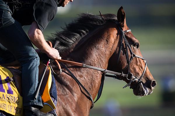 Toast of New York gallops at Santa Anita on 10.30.14