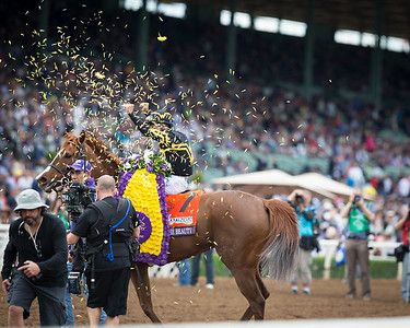 Judy the Beauty (Ghostzapper) wins The Breeders' Cup Filly and Mare Sprint at Santa Anita on 11.1.2014. Mike Smith up, Wesley Ward owner and trainer.