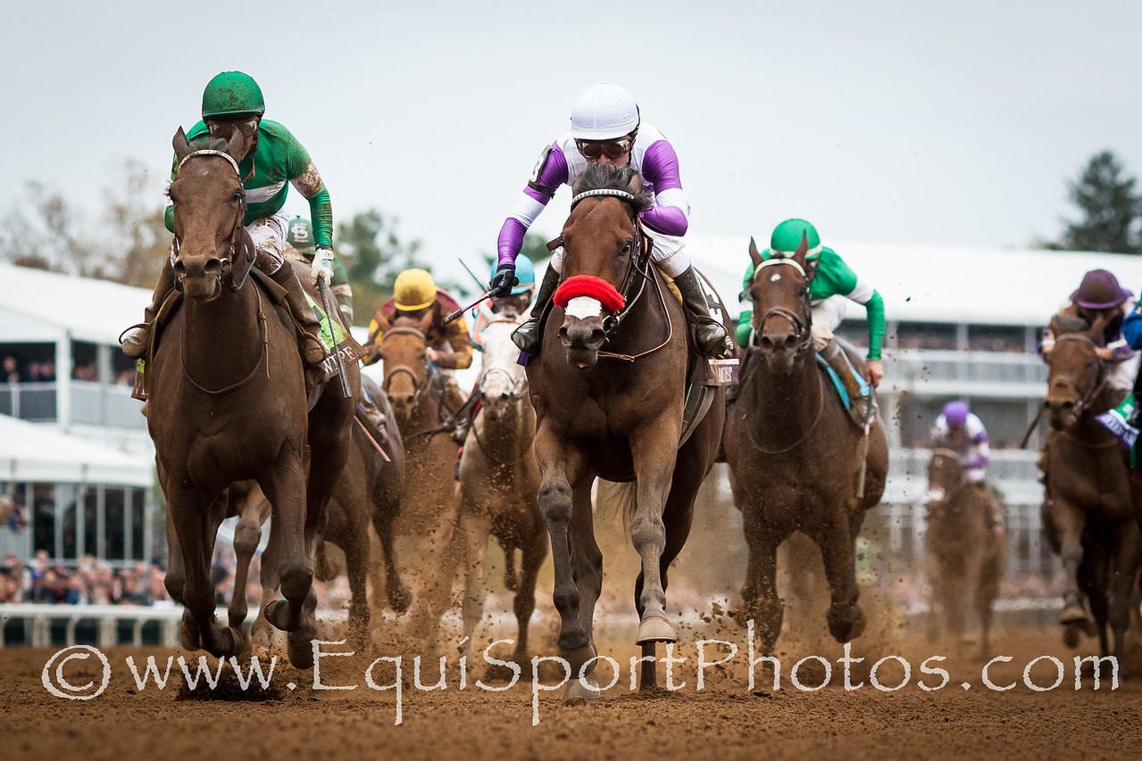 Nyquist (Uncle Mo), Mario Gutierrez up, wins the BC Juvenile. Trainer: Doug O'Neill, Owner: Reddam racing.