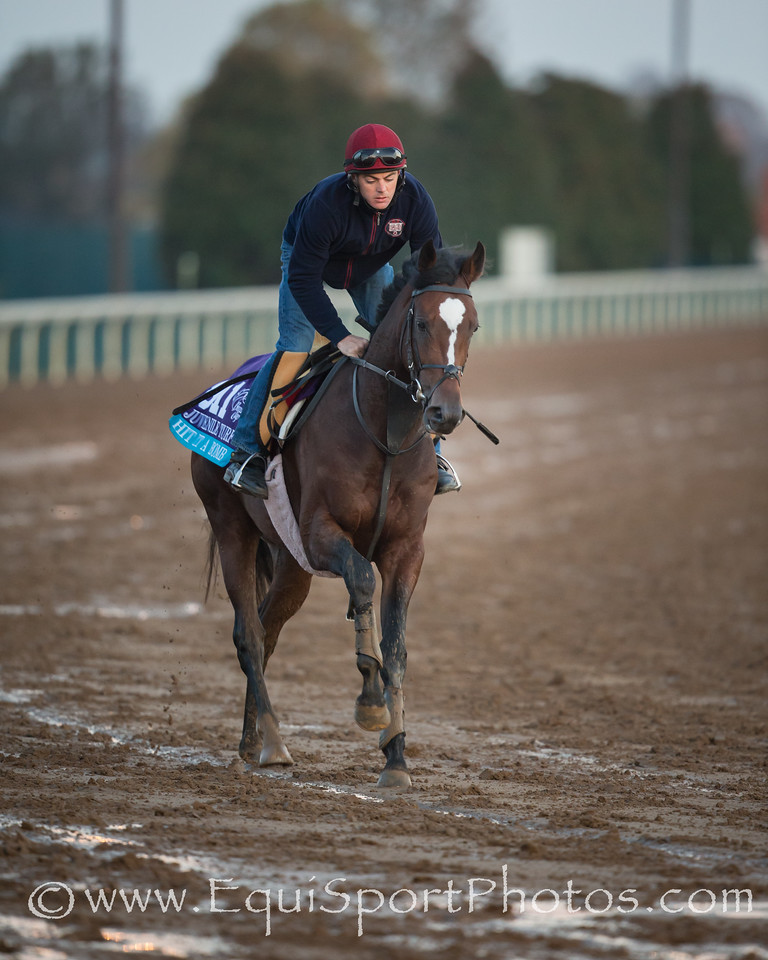 Hit It A Bomb gallops on Keeneland's main track on 10.29.2015