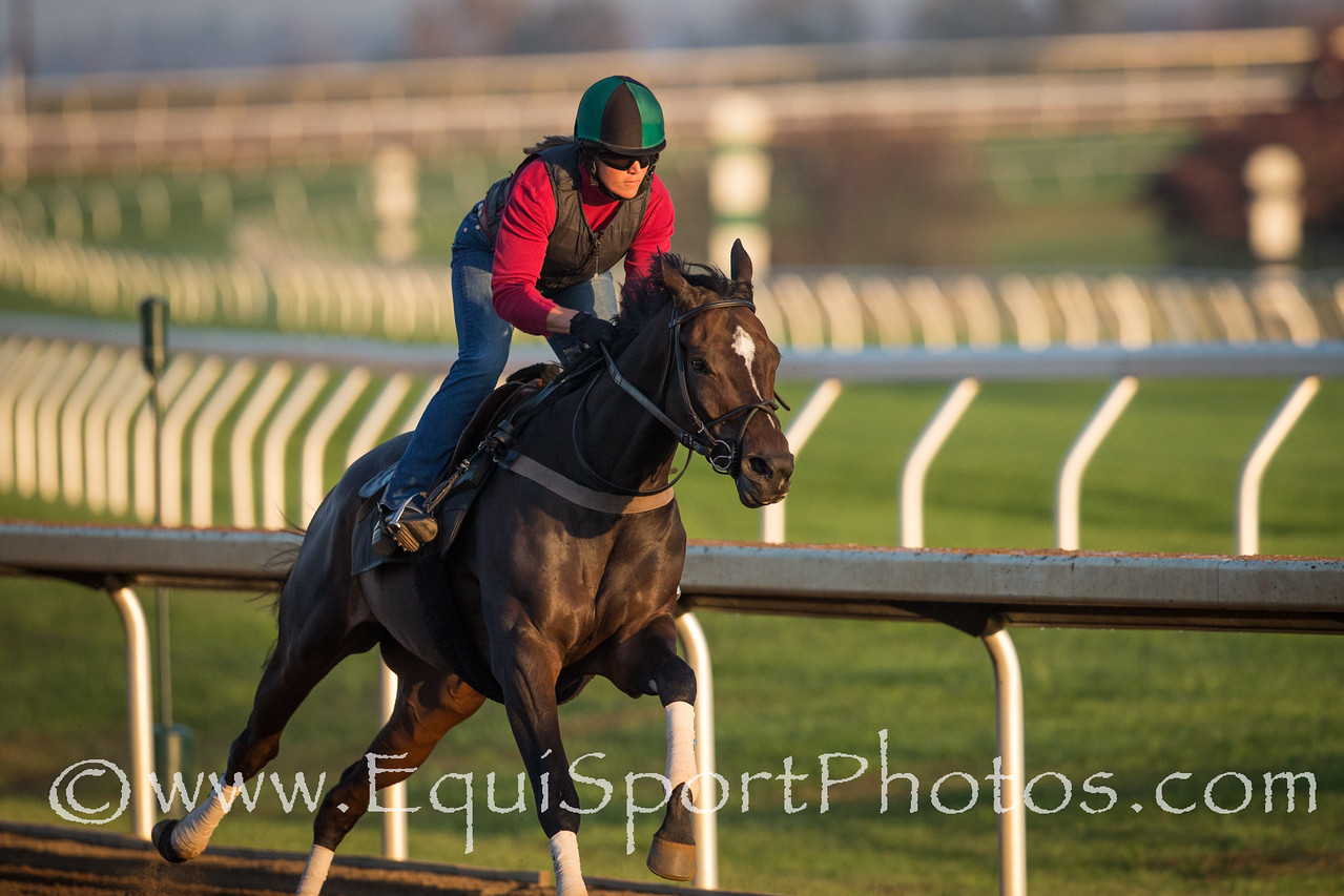 Frivolous works at Keeneland on 10.23.2015