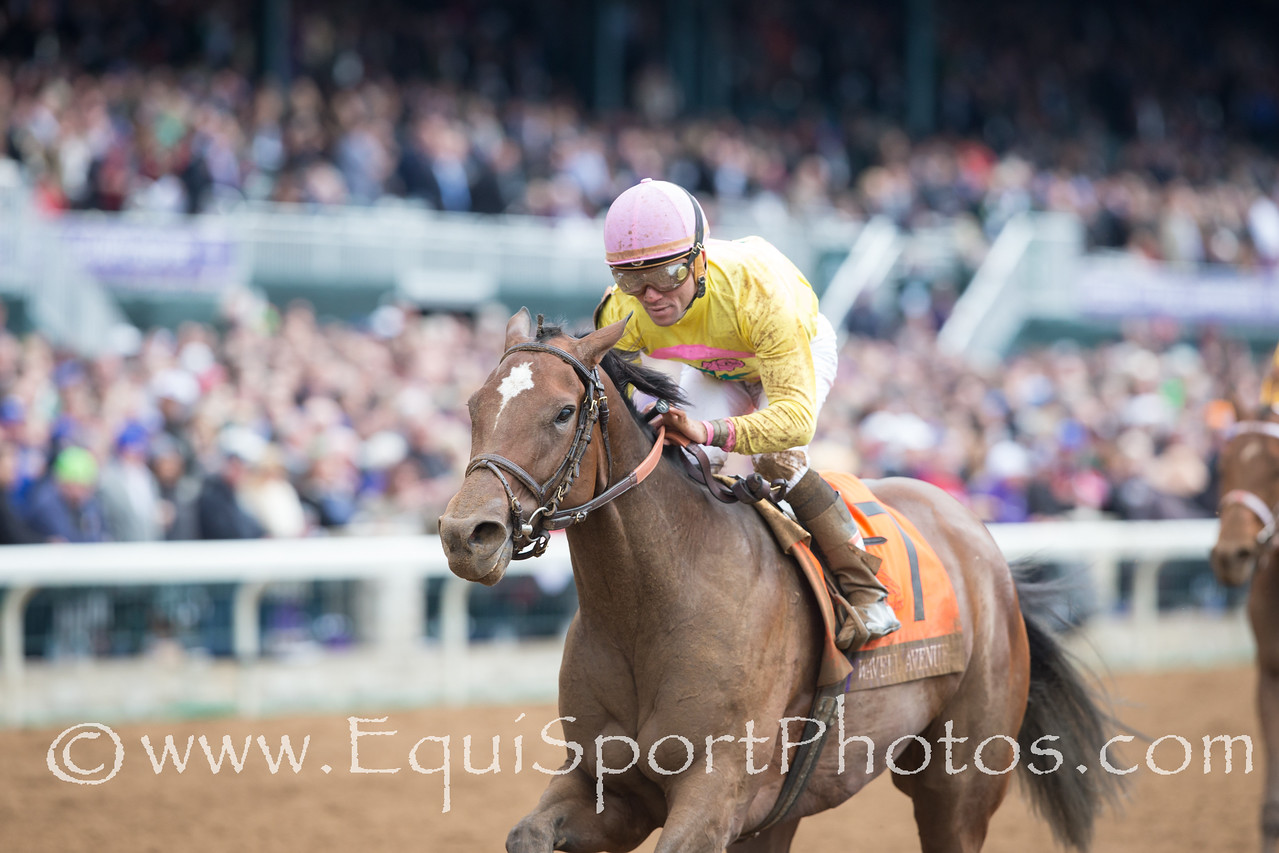 Wavell Avenue (Harlington) wins The Breeders' Cup Filly & Mare Sprint. Joel Rasario up, Chad Brown trainer, Michael Dubb, David Simon, Head of Plains and Bethlehem Stb. owners.