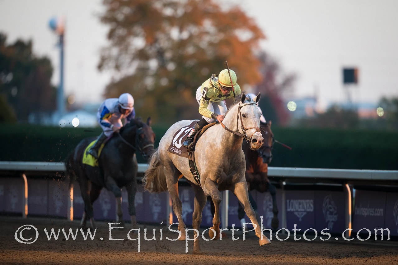 Bailoutbobby (Mizzen Mast) wins The Marathon (G2) at Keeneland on 10.30.2015. Joel Rosario up, Doug O'Neill trainer, R3 Racing owner.