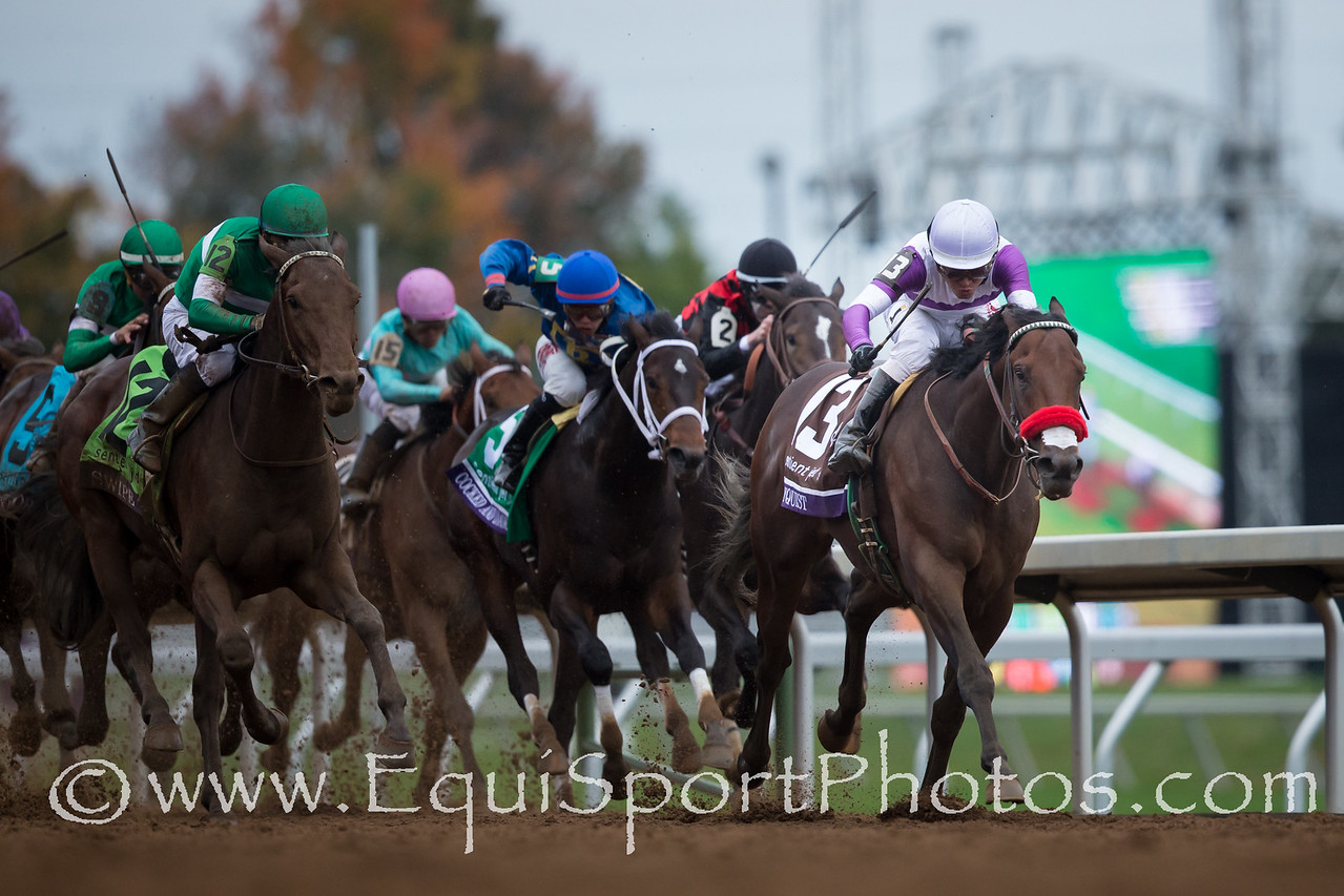 Nyquist (Uncle Mo) wins The Breeders' Cup Juvenile at Keeneland on 10.31.2015. Mario Gutierrez up, Doug O'Neill trainer, Reddam Racing owner.
