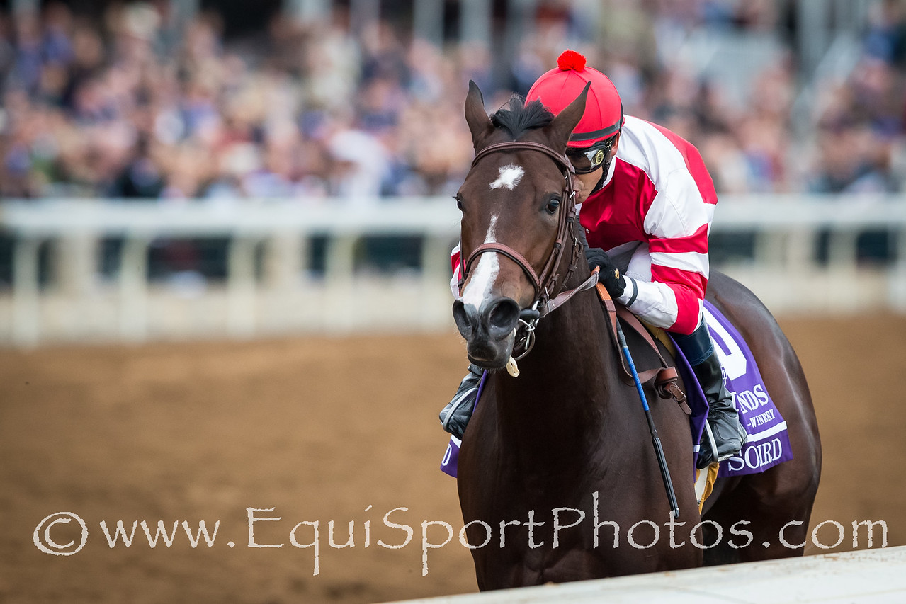 Songbird (Medaglia d'Oro), Mike Smith up, wins thw BC Juvenile Fillies. Trainer: Jerry Hollendorfer, Owner: Fox Hill Farms.