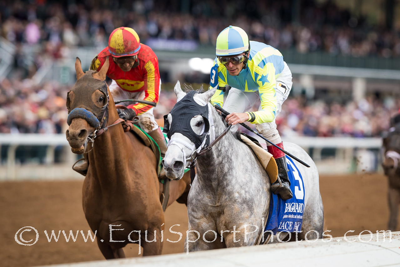 Race Day (Tapit), John Velazquez up, wins the Fayette Stakes at Keeneland 10.30.15. Trainer: Todd Pletcher, Owner: Matthew Schera.