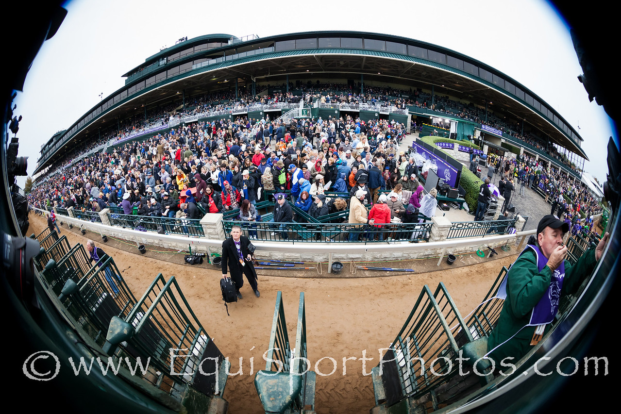 Keeneland crowd at the Breeders' Cup 10.31.15.