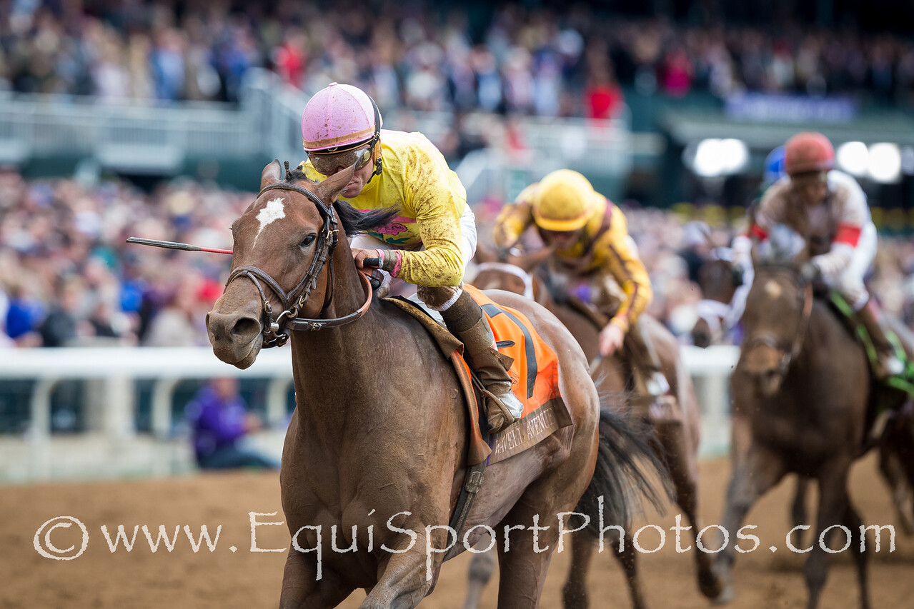 Wavell Avenue (Harlington), Joel Rosario up, wins the BC Filly & Mare Sprint. Trainer: Chad Brown, Owners: Dubb, Simon, Head of Plains, Bethlehem Stable.