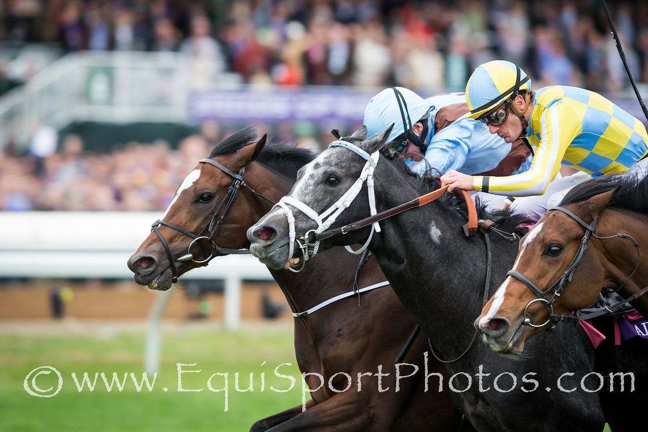 Hit A Bomb, (Far outside, War Front), Ryan Moore up, wins the BC Juvenile Turf. Airoforce runs second. Trainer: Aidan O'Brien, Owner: Evelyn Stockwell.
