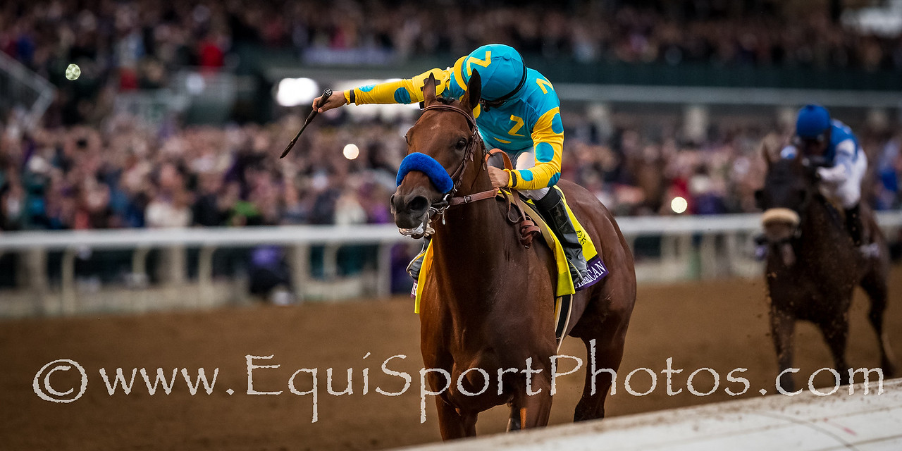 American Pharoah (Pioneer ofthe Nile) wins the Breeders' Cup Classic at Keeneland on 10.31.2015. Victor Espinoza up, Bob Baffert trainer, Zayat family owner.