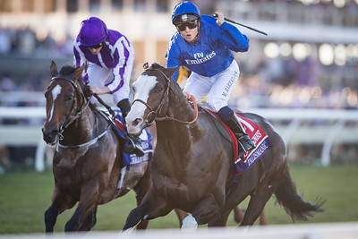 Talismanic (Medaglia d'Oro) wins the Breeders' Cup Turf at Del Mar on 11.4.2017. Mickael Barzalona up, Adre Fabre trainer, Godolphin Stable owners.