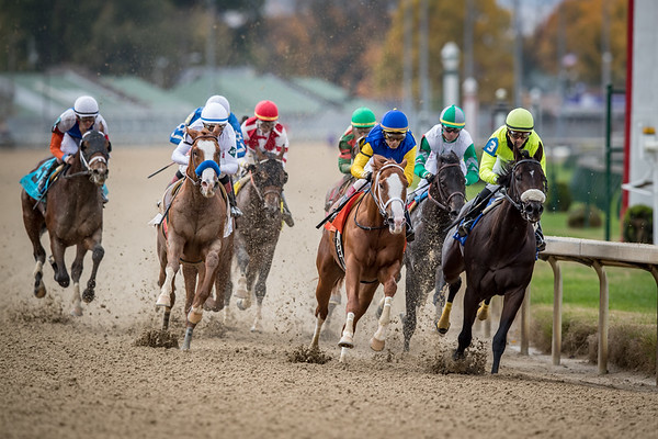 Improbable, (#2, City Zip), Drayden Van Dyke up, wins the Street Sense Stakes at Churchill Downs 11.02.18. Bob Baffert trainer, WinStar Farm LLC, China Horse Club and SF Racing LLC owners.