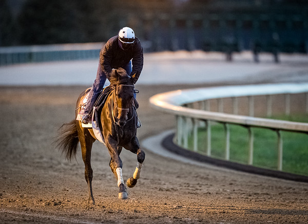 Madone, trained by trainer Simon Callaghan, exercises in preparation for the Breeders' Cup Juvenile Fillies Turf at Keeneland 10.30.20