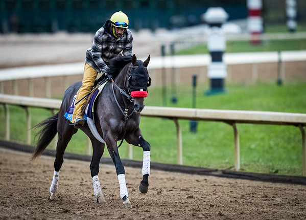 Hot Rod Charlie, trained by Doug F. O'Neill, exercises in preparation for the Breeders' Cup Juvenile at Keeneland 1030.20.