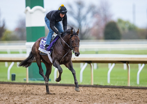 True Timber, trained by Jack Sisterson, exercises in preparation for the Breeders' Cup Dirt Mile at Keeneland 10.20.30.
