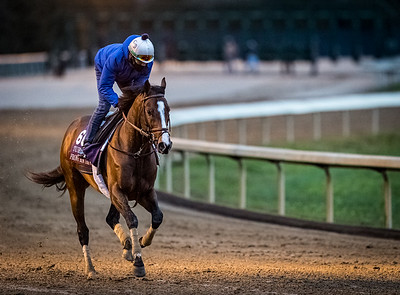 Front Run The Fed, trained by trainer Chad C. Brown, exercises in preparation for the Breeders' Cup Turf Sprint at Keeneland 10.30.20
