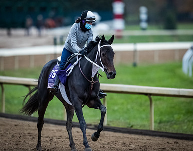 Vequist, trained by Robert E. Reid Jr., exercises in preparation for the Breeders' Cup Juvenile Fillies at Keeneland 10.30.20.