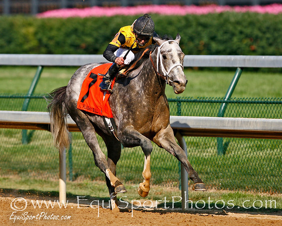 Flashy Bull, with Robby Albarado up, wins the Stephen Foster Handicap at Churchill Downs, Louisville, Ky. 6.16.2007