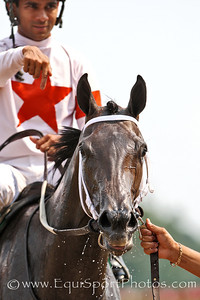 Rated Fiesty, under Shaun Bridgmohan, wins the Debutante Stakes at Churchill Downs. 7.07.07