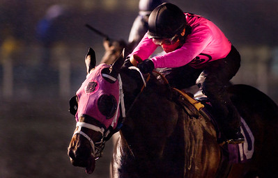 Comma to the Top winth Corey Nakatani up wins the Hollywood Futurity at Hollywood Park, Inglewood CA. December 18, 2010  Credit: Alex Evers/EquiSport Photos
