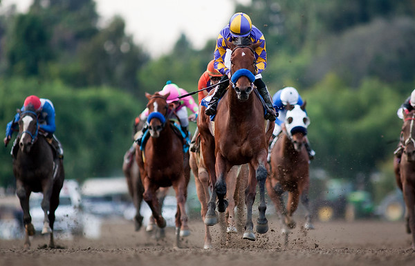 Switch with Joel Rosario up wins the La Brea Stakes (GI) at Santa Anita Park, Arcadia CA. December 26, 2010. Credit: Alex Evers/EquiSport Photos