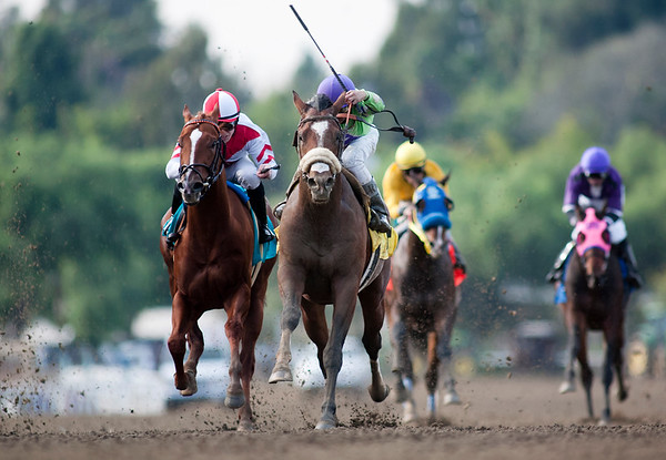 Thirtyfirststreet with Rafael Bejarano up wins the California Breeders Champion Stakes at Santa Anita Park, Arcadia Ca. December 26, 2010 Alex Evers/EquiSport Photos