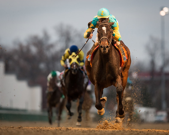 Jojo's Melody (Harlan's Holiday), Corey Lanerie up, runs 5th in the Goldenrod at Churchill 11.29.14. Trainer: Dale Romans, Owner: Zayat Stables.