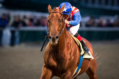 Dortmund (Big Brown), Martin Garcia up, wins an AOC at Churchill 11.29.14. Trainer: Bob Baffert, Owner: Kaleem Shah.