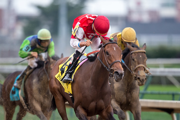 Cristina's Journey ( Any Given Saturday) wins the Pocahontas (G2) at Churchill Downs on 9.6.2014. Miguel Mena up, Dale Romans trainer, GSN Racing owner.