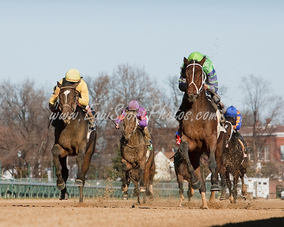 Maximus Ruler (Roman Ruler), Francisco Torres up, wins an Allowance at Churchill Downs 11.28.2009mw