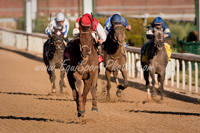 Sassy Image (Broken Vow), Robby Albarado up, wins the Golden Rod Stakes at Churchill Downs 11.28.2009 (Wendy Uzelac/EquiSport Photos)