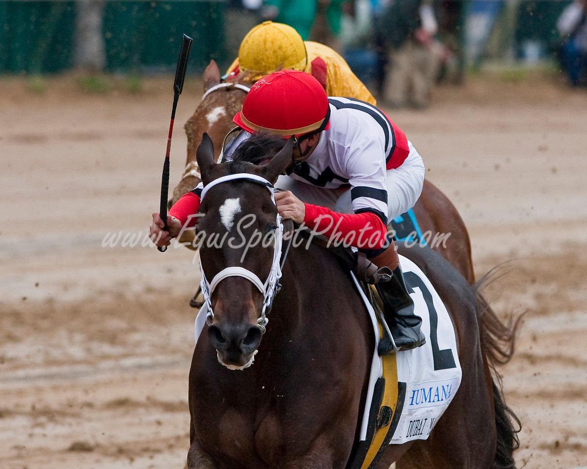 Dubai Majesty (Essence of Dubai), Kent Desormeaux up, running in the Humana Distaff Stakes at Churchill Downs 05.02.2009mw (EquiSport Photos)