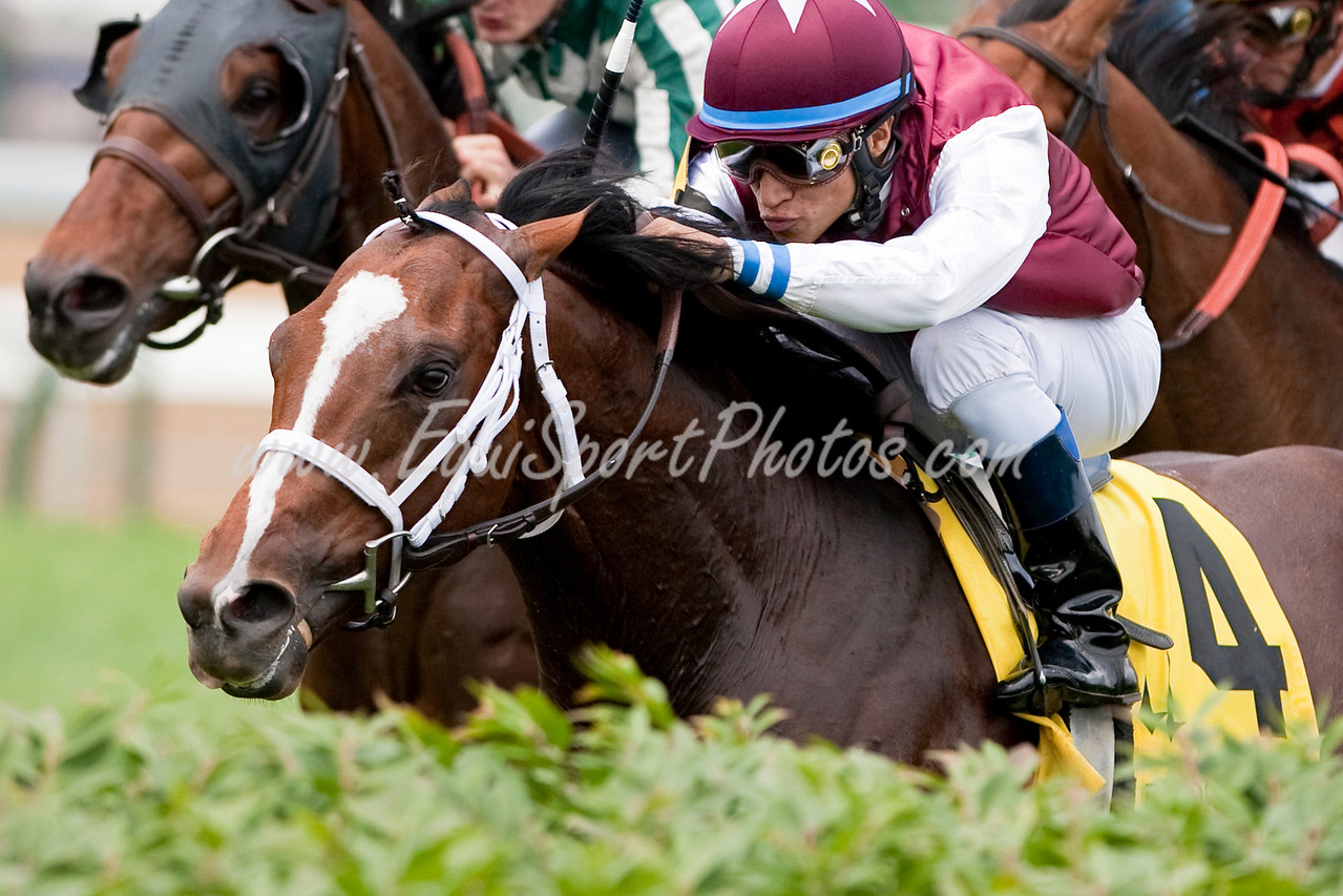 Florentino, (Swept Overboard), Alan Garcia up), wins the Jefferson Cup (G.2) at Churchill Downs 6.13.2009mw (EquiSport Photos)