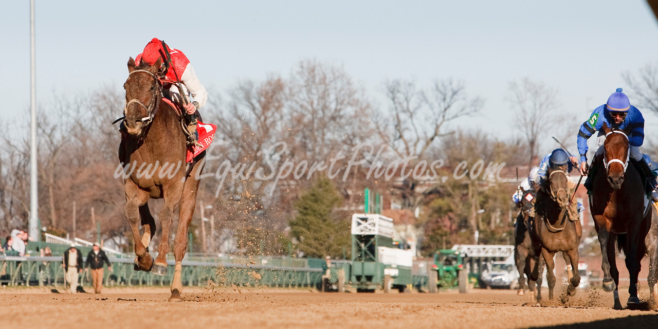 Sassy Image (Broken Vow), Robby Albarado up, wins the Golden Rod Stakes at Churchill Downs 11.28.2009mw