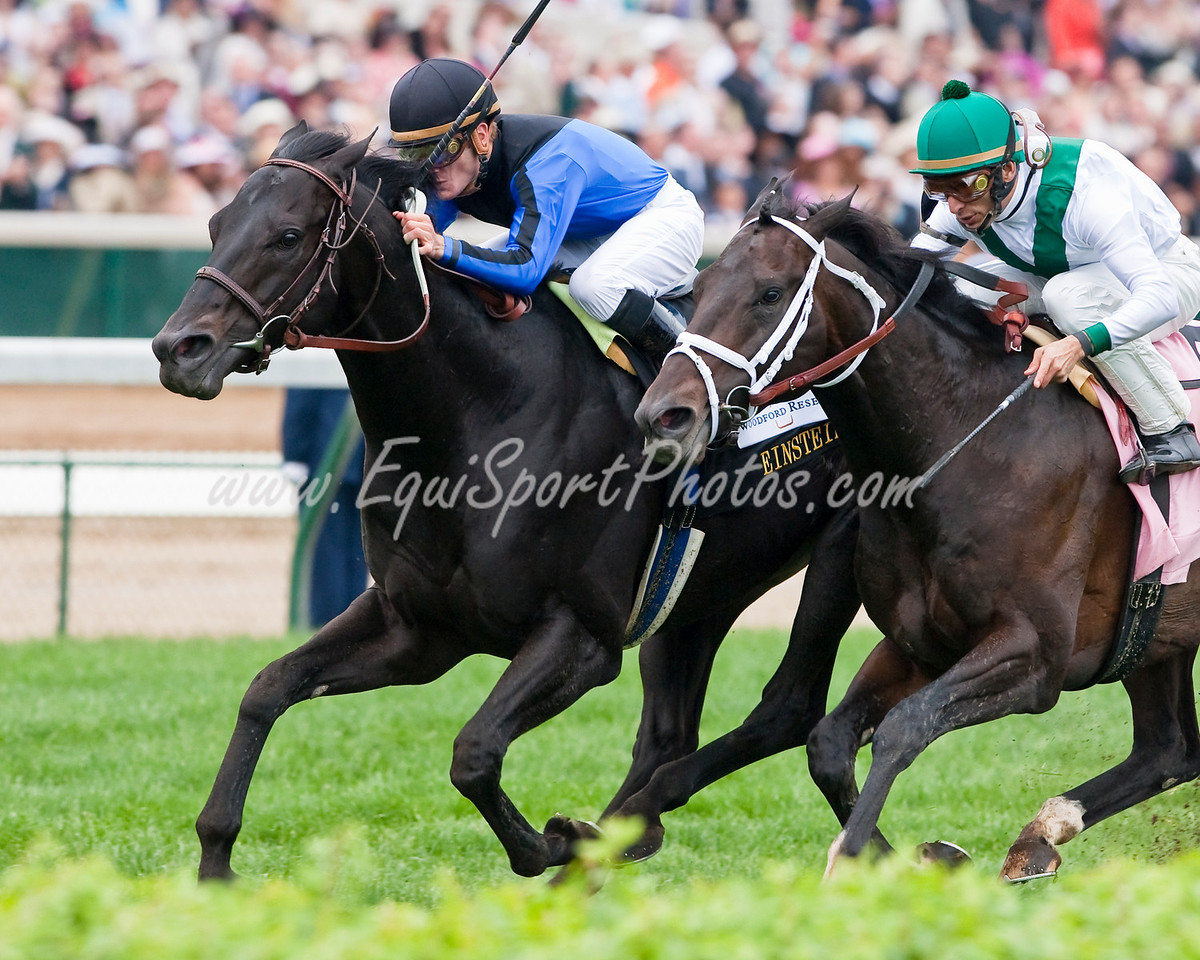 Einstein (Spend a Buck), Julien Leparoux up, wins the Woodford Reserve Turf Classic at Churchill Downs 05.02.2009mw (EquiSport Photos)