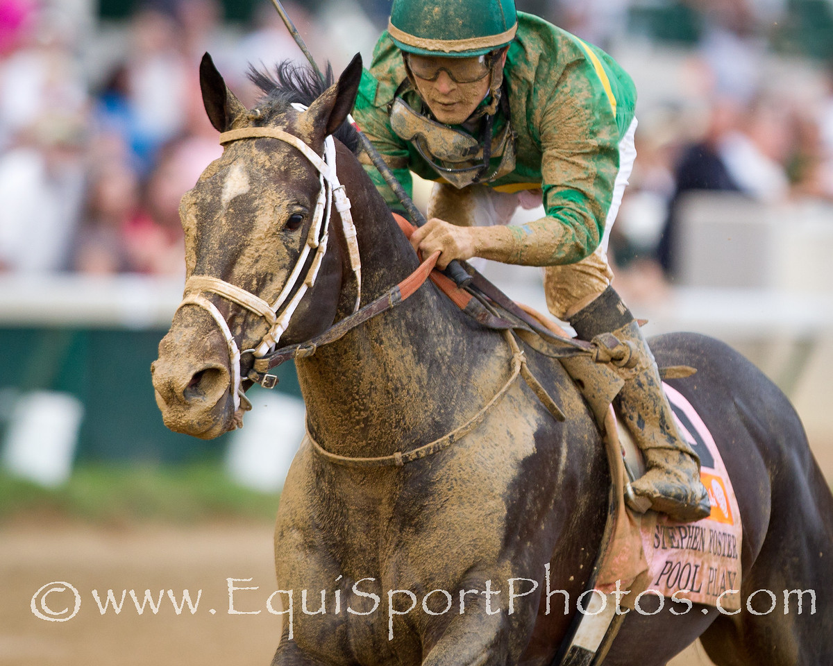 Pool Play (Silver Deputy) wins the Stephen Foster Handicap at Churchill Downs on 06.18.2011mw.  Miguel Mena up, Mark Casse trainer, William Farish owner.