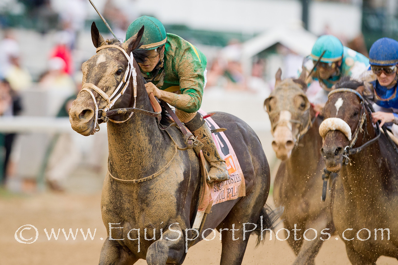 Pool Play (Silver Deputy) wins the Stephen Foster Handicap at Churchill Downs on 06.18.2011.  Miguel Mena up, Mark Casse trainer, William Farish owner.