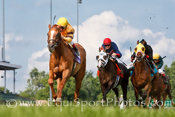 Wise Dan (Wiseman's Ferry), jon Court up, wins the Firecracker S. (G2) at Churchill 7.04.2011mw. Trainer: Charles Lopresti, Owner: Morton Fink