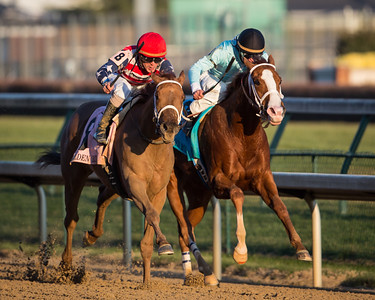 Seaneen Girl (Spring At Last) wins the Goldenrod Stakes at Churchill Downs on 11.24.2012.  Miguel Mena up, Bernard Flint trainer, Navee Chowhan owner.