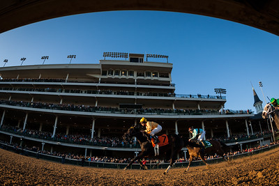 Vexed (Arch) wins the Golden Rod Stakes (G2) at Churchill Downs on 11.30.2013. Shaun Bridgmohan up, Al Stall Trainer, Claiborne Farm owner.